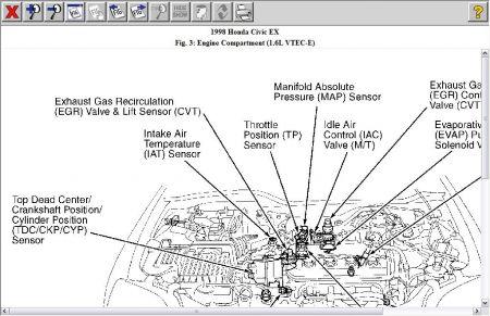 1998 Honda Civic Ex Engine Diagram Ssr 125 Pit Bike Wiring Diagram Begeboy Wiring Diagram Source