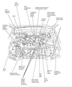 Nissan Sentra Crankshaft Sensor Location