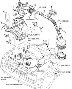Ecu on Fuel Pump Relay Location On Mazda B2600i