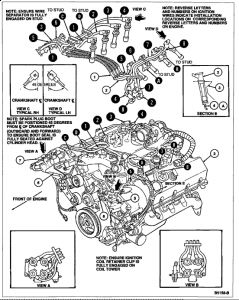 1995 Ford Thunderbird Spark Plug Wires: 1995 Ford ...  Ford Thunderbird Wiring Diagram on