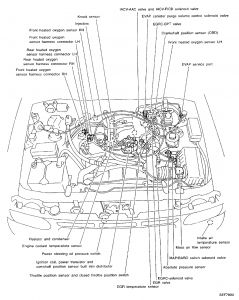 Nissan Pathfinder Engine Diagram Wiring Diagrams Tame Hand Tame Hand Ristorantealletrote It