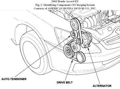 2003 Honda Accord Honda Accord Serpentine Belt: Engine Cooling ...