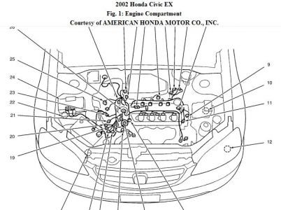 Honda Civic Engine Diagram. Honda. Wiring Diagram Instructions