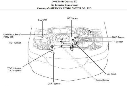 pilot timing belt as well honda pilot knock sensor wiring diagram2002 honda odyssey diagram wiring diagram rh 39 siezendevisser nl
