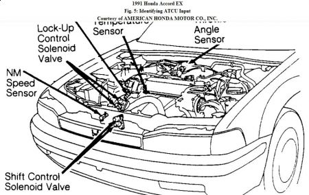 honda civic transmission wiring diagram honda 91 honda civic wiring diagram 91 image about wiring diagram on honda civic transmission wiring