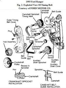 https://www.2carpros.com/forum/automotive_pictures/192750_TimingBelt93FordRanger01_1.jpg