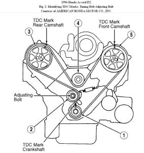 Honda Passport 1996 Honda Passport Timing Tensioner on honda passport parts diagram