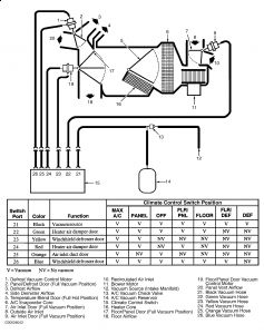 Graphic on 2001 Ford Windstar Ac Diagram