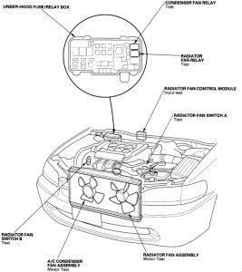 Dry Sump Engine Diagram as well Chevrolet Pickup C1500 Wiring Diagram And Electrical Schematics 1997 likewise How To Replace An Intake Manifold On All 1996 2000 Honda Civic Lx Del Sol 16l 4 Cyl Engines likewise Tech Feature Servicing Ford S 3 0l Engine besides Ford Focus Under Hood Diagram. on honda engine cooling diagram
