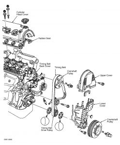 How to replace water pump in 1995 Honda Accord? - Yahoo! Answers