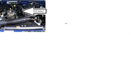 http://www.2carpros.com/forum/automotive_pictures/544960_PCV_VALVE_OR_NOT_1.jpg