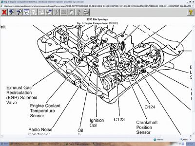 1995 kia sportage engine diagram easy wiring diagrams u2022 rh art isere com