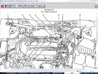 2000 infiniti g20 engine diagram data wiring diagrams u2022 rh mikeadkinsguitar com