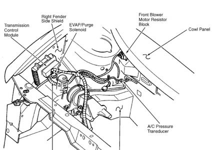 Location Of Evaporator On 93 Honda Accord moreover 92 Geo Tracker Headlight Wiring Diagram besides 96 Civic Fuse Box also 1991 Geo Storm Wiring Diagram further Typical Toyota Abs Control Relay Wiring Diagram. on 1996 acura integra fuse box diagram