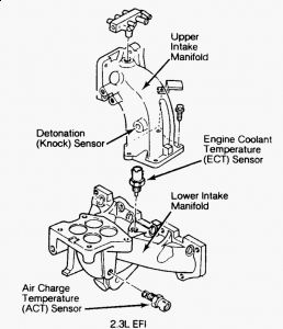 1999 Jeep Wrangler Fuse Box Diagram moreover Does The 2015 Hyundai Elantra 2 0 Have A Timing Belt likewise Index furthermore 3onjz Fuse Box Diagram Missing 2004 Beetle Convertible moreover Volkswagen Jetta Fuse Location Diagrams. on fuse box for vw polo 2003