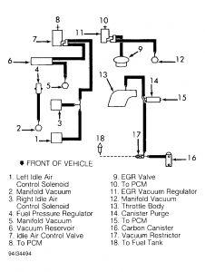 1994 ford taurus vacuum hose vacuum hose became. Black Bedroom Furniture Sets. Home Design Ideas