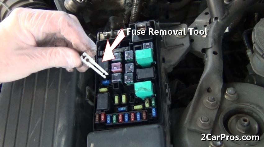 New Gen Bm Pinout additionally Bss likewise Fuse together with Thumb   E F C Abf Fd Ed E D likewise Elp. on 5 amp fuse blown