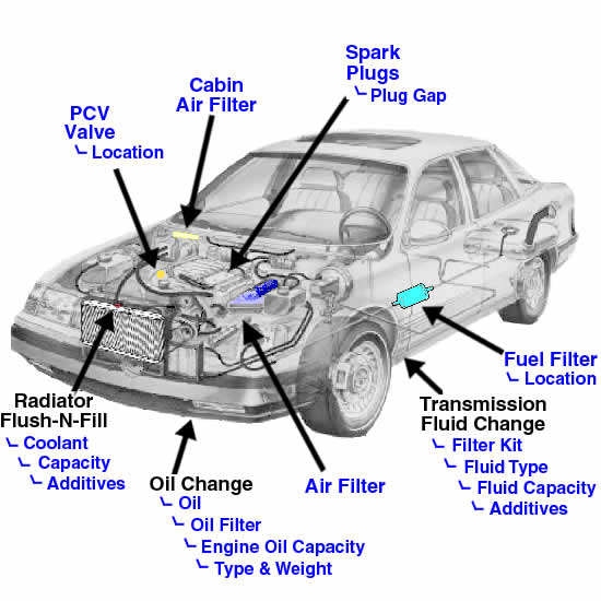 2000 Chevy Cavalier Fuel Filter Wiring Automotive Diagramrhelfjo: Fuel Filter On A 1998 Chevy Cavalier At Elf-jo.com