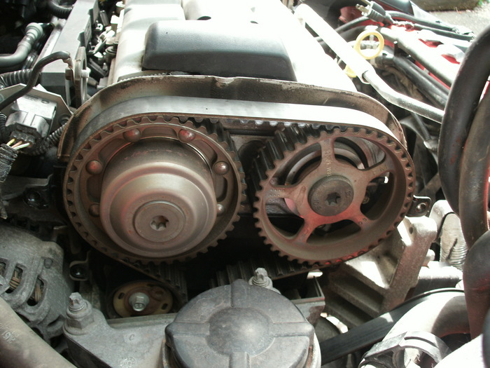 2003 Ford Focus Timing Belt