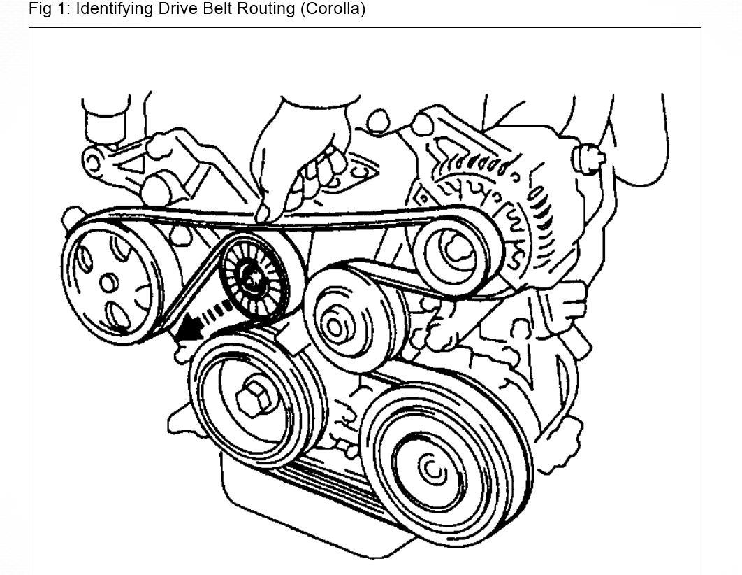 2001 Toyota Corolla Belt Tensioner Diagram also 1991 Isuzu Trooper Transmission Diagram together with 96 Mercury Grand Marquis Stereo Wiring Diagram in addition 2004 in addition 2005 Buick Lacrosse Engine Cooling System Diagram. on alternator belt