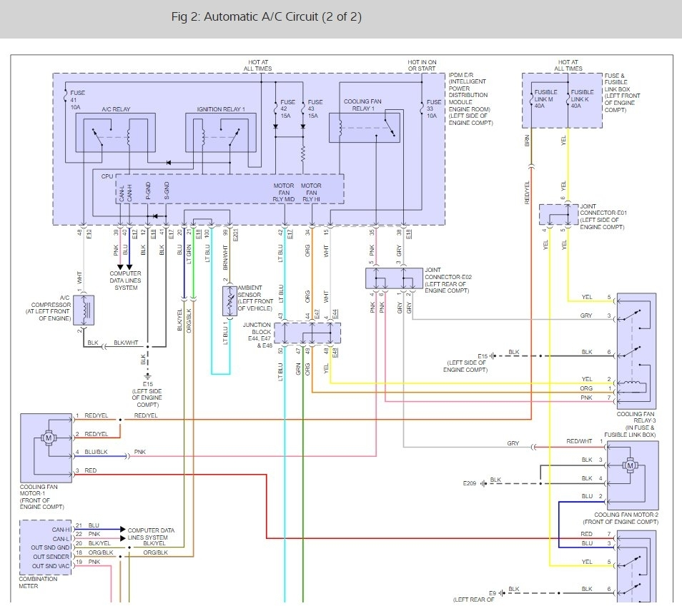 DIAGRAM] 2010 Nissan Maxima Ac Compressor Wiring Diagram FULL Version HD  Quality Wiring Diagram - DENDROGRAM.DISCOCLASSIC.ITDiagram Database - discoclassic.it