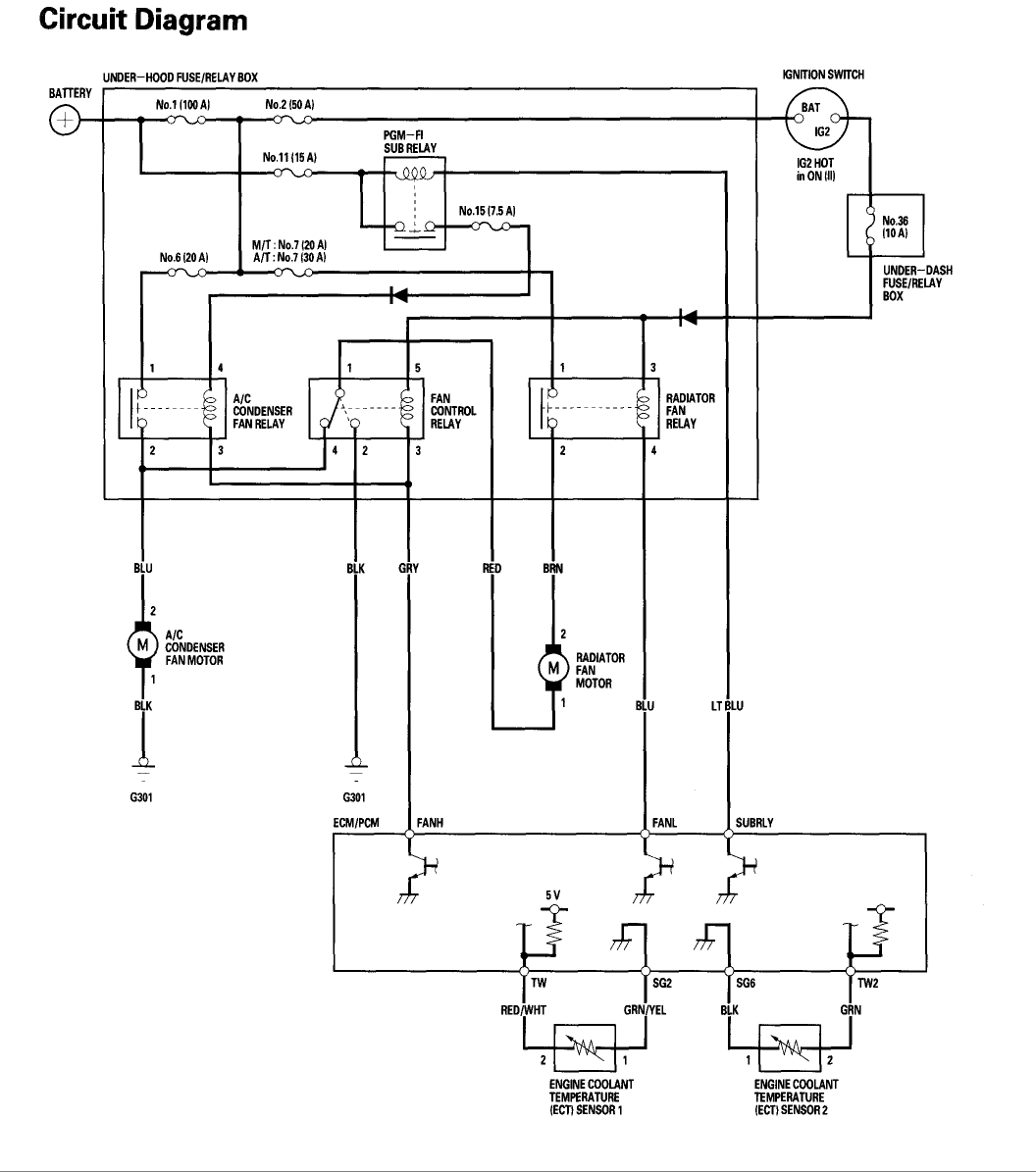 Temp Switch Wiring Diagram Ridgid Table Saw Wiring Diagram For Wiring Diagram Schematics
