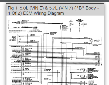 Vacuum Line Diagram And Wiring Harness Diagram