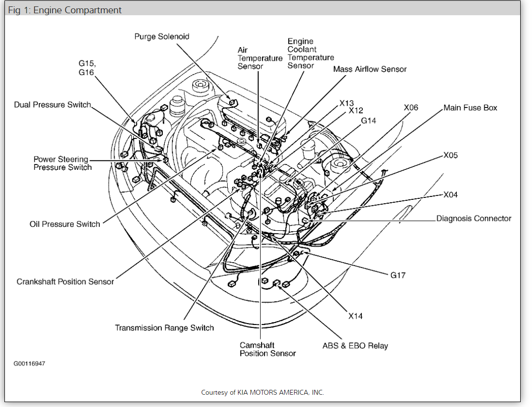 2005 Kia Sedona Engine Compartment Wiring Diagram Wiring Diagrams Page Multiply A Multiply A Passaggimag It