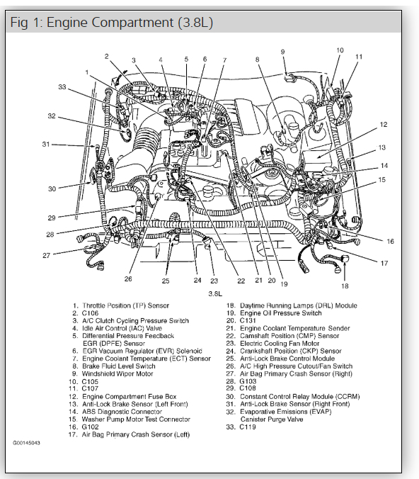 1998 Mustang V6 Engine Diagram - Wiring Diagrams Word crop-disk -  crop-disk.romaontheroad.it | 1998 Mustang V6 Engine Diagram |  | Roma on the Road